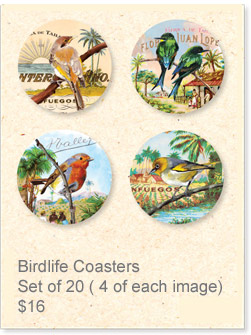 Coasters: Birdlife